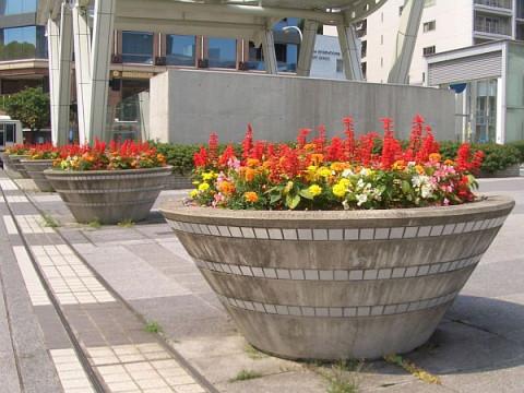 5-06sakae-parkflowerbox.jpg